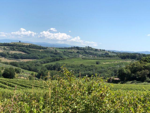 宿泊したVilla Leonardo周辺の風景