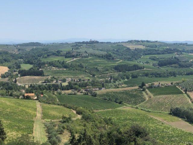 Castello Sonnino塔からの展望。この写真にあるぶどうとオリーブ畑はSonnino 家所有