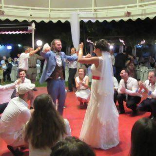 「オリーブの木」に託す希望〜マルマラ海地方で娘の「手作り」結婚式〜