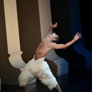 芸術家としてのバレエダンサー、マルセロ・ゴメス