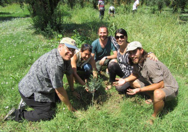 家族とともにオリーブの苗木を植樹