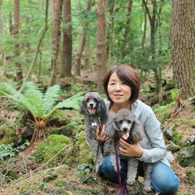 ロンとハリーと富士山の樹海を散策