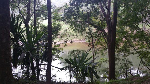 Dr. Arvigo 宅への通学路、Medicine Trailから望む Macal River