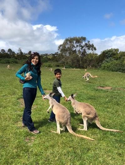 カンガルーと触れ合える野生公園。オーストラリア各地にたくさんある