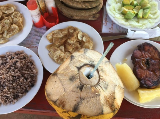 Our lunch at the farm: plantains, avocadoes, pork, and fresh coconut. We quickly learned that you can never have too much coconut.