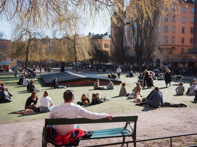 春の陽気に距離を保って日向ぼっこ。写真 Simon Rehnström